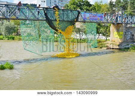 CLUJ-NAPOCA ROMANIA - AUGUST 14 2016: Rubber duck race start down the river for charity purposes. Yellow toy ducks are dumped in the river.