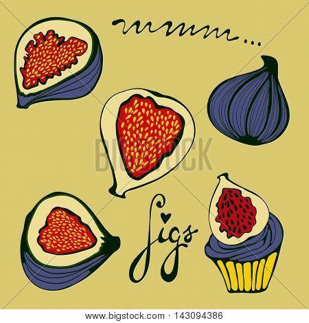 Hand drawn figs set. Eco food. Illustration in vector format