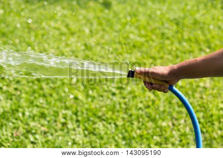 Gardener watering garden from hose in summer time