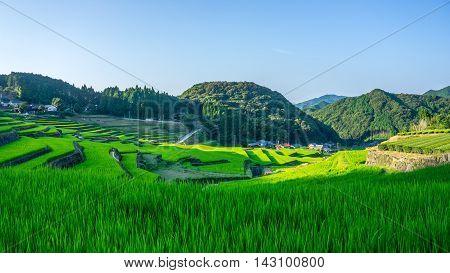 famous terraced rice-fields in Hasami, Nagasaki, Japan.