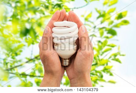 recycling, electricity, environment and ecology concept - close up of hands holding energy saving lightbulb or lamp over green natural background