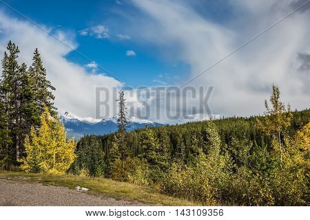 Canadian Rockies. Beautiful autumn day. Side of the road among the mountains and forests yellowed