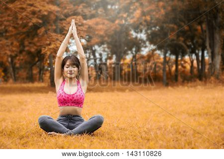 Yoga in the park, The idea to maintain a healthy body and mind.