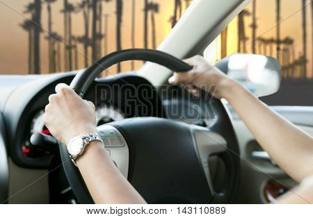 Selected focus Woman is hands on the steering wheel of the car