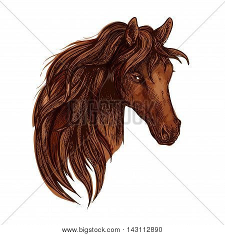Horse with long wavy mane. Artistic portrait of beautiful brown stallion with shiny eyes and proud look