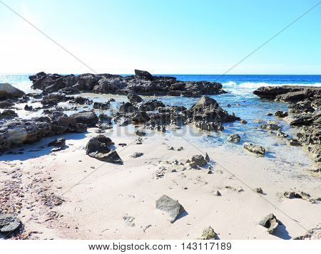 Low tide at a rocky beach with copy space.