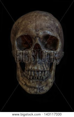 Human skull isolated on black background front view close up still life style