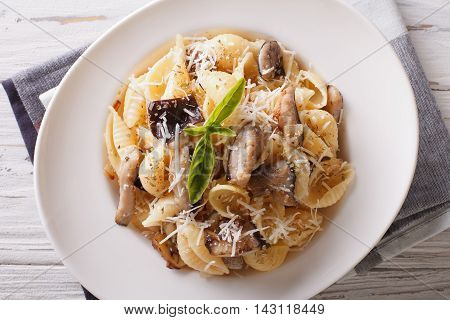 Italian Cuisine: Conchiglie With Porcini And Parmesan Closeup. Horizontal Top View