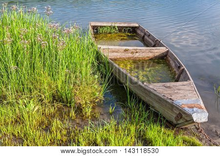 abandoned wooden boat filled with water on the shore