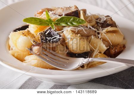 Conchiglie With Porcini Mushrooms And Parmesan Close-up. Horizontal