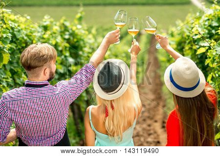 Young people looking at the wine glasses standing back on the vineyard during the wine degustation. Rear view focused on glasses
