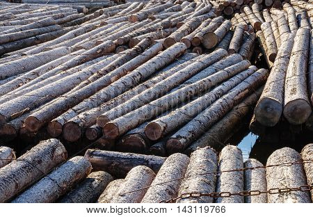 Timber Floating On The River