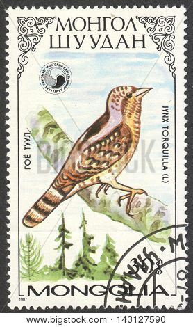 MOSCOW RUSSIA - CIRCA MAY 2016: a post stamp printed in MONGOLIA shows a Jynx torquila bird the series