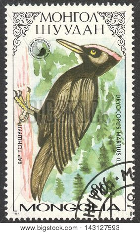 MOSCOW RUSSIA - CIRCA MAY 2016: a post stamp printed in MONGOLIA shows a Dryobates martins bird the series