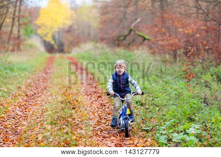 Happy kid boy of 3 years having fun in autumn forest with a bicycle on beautiful fall day.