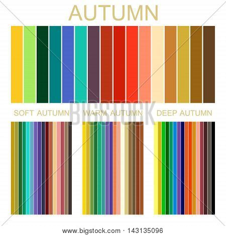Stock vector seasonal color analysis palette for autumn type of female appearance. Set of palettes for soft, warm and deep autumn