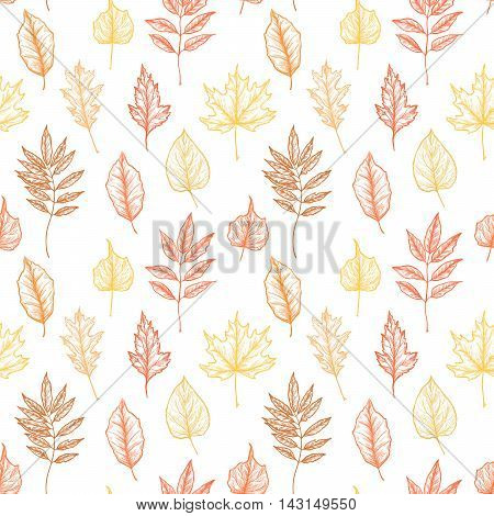 Hand drawn illustrations. Seamless pattern with leaves. Forest background