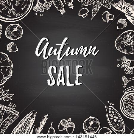 Hand Drawn Vector Illustration. Background With Autumn Elements ( Carrot, Pumpkin, Rowan, Mushroom,