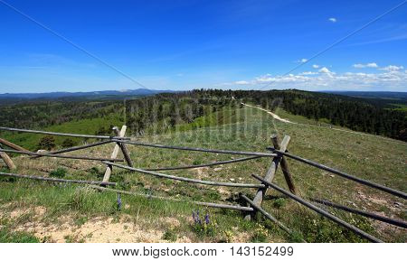 Split Rail Fence on Cement Ridge in the Black Hills of South Dakota United States