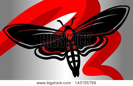 Monochrome butterfly. Decorative butterfly - death's-head hawkmoth. Vector illustration.