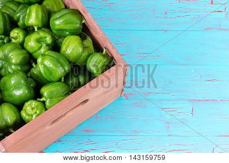 Corner Of Crate Fully Stocked With Green Peppers