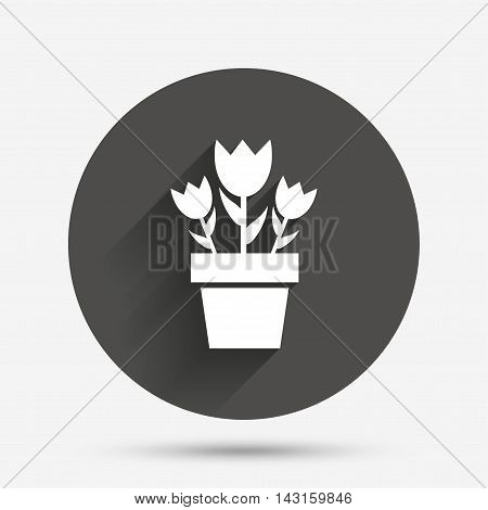 Flowers in pot icon. Bouquet of roses. Macro sign. Circle flat button with shadow. Vector