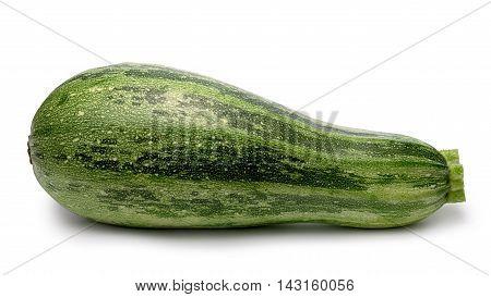 Striped Zucchini Whole, Paths