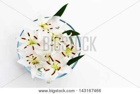 Flowers of white lilies in a round bowl.