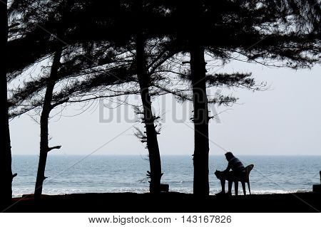 A silhouette of a man peacefully reading a book on the beach during his summer holidays.