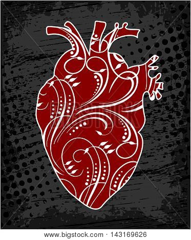 Anatomical human heart, drawing in cartoon style. Realistic red heart, vector illustration.