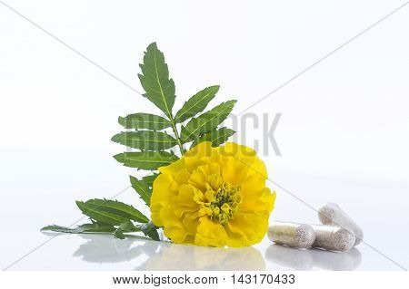 Herbal therapy marigold oil Tagetes flower capsule