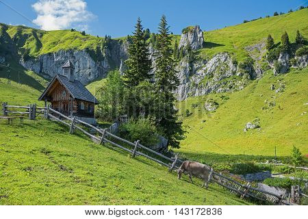 Dreamy Mountain Scenery With Wooden Chapel And Milker, Upper Bavaria