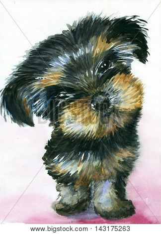 Watercolor cute Yorkshire Terrier puppy