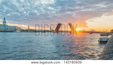 Neva river. Palace Bridge Rostral Column Peter and Paul Cathedral. Morning in St.-Petersburg Russia