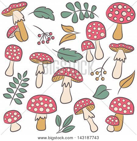 Cute amanita with leafs and berries vector color collection. Poisonus mushrooms and plants isolated on white.