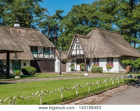 Cottage house with thatched roof with a green field in front