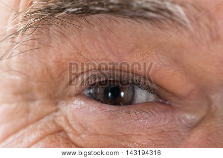 Close up Photo Of Senior Man's Eye