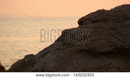 Sunset over the ocean, rock in front of sea surface and sky full of warm sunlight.
