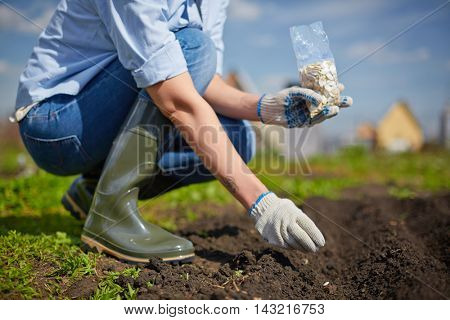Woman sowing