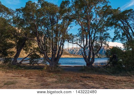 Lake Pearson / Moana Rua Wildlife Refuge Located In Craigieburn Forest Park In Canterbury Region, So