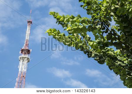 Broadcast transmitting antenna for radio and television signal on green tree and sky background.