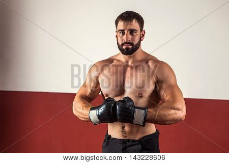 Muscular Boxer In Boxing Gloves Is Looking At The Camera.