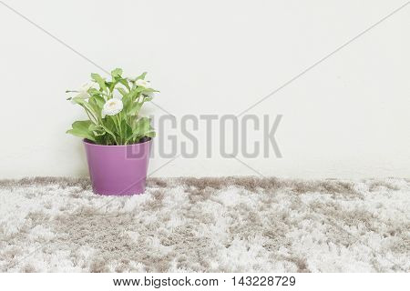 Closeup artificial green plant made from plastic with white flower in purple pot on blurred gray carpet and white cement wall textured background under window light