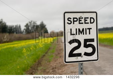 Speedy Road