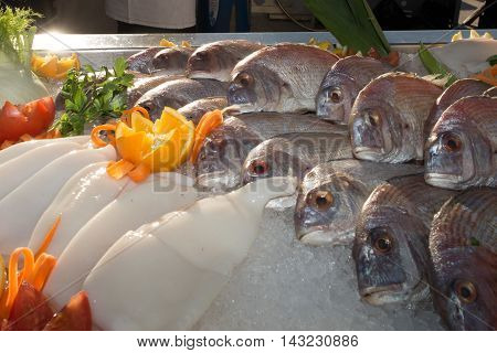 Seafood On Ice At The Fish Market, Bream And Squid