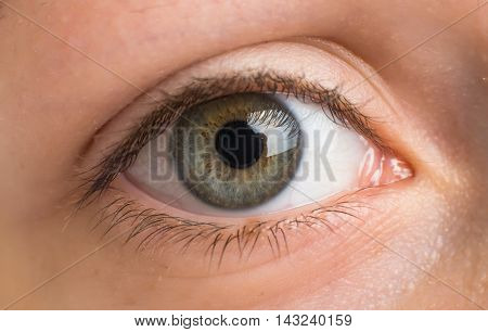 Macro image of human eye perfect, detail, cosmetics