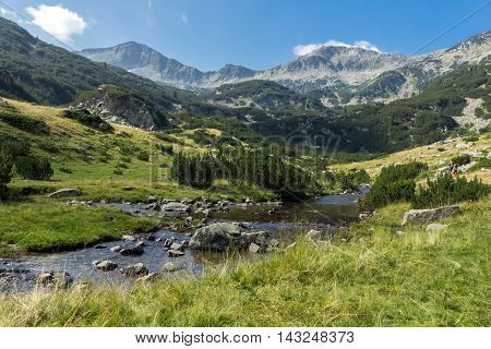 Banderishki Chukar Peak and mountain river, Pirin Mountain, Bulgaria
