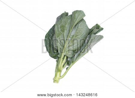 Chinese kale fresh vegetable a Chinese broccoli on white background.