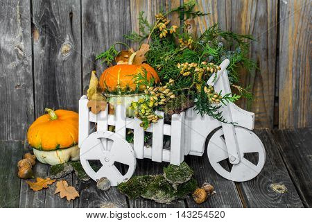Small Pumpkin On Wooden Background, Autumn