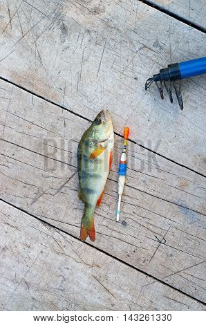 bass fishing tackle on a wooden background
